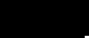 BajenRoughHouse-logo-bw